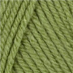 Lion Brand Vanna's Choice ® Baby Yarn (169)