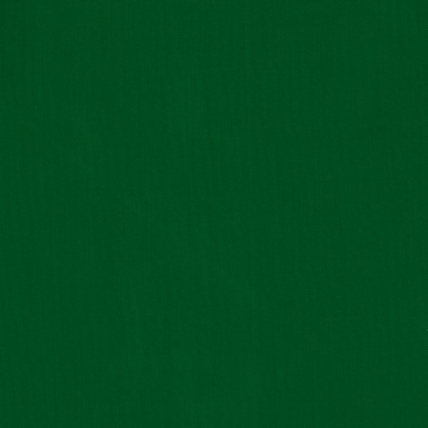 Polyester Lining Flag Green Fabric