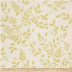 Fabricut 50024w Floreale Wallpaper Chartreuse 02 (Double Roll)
