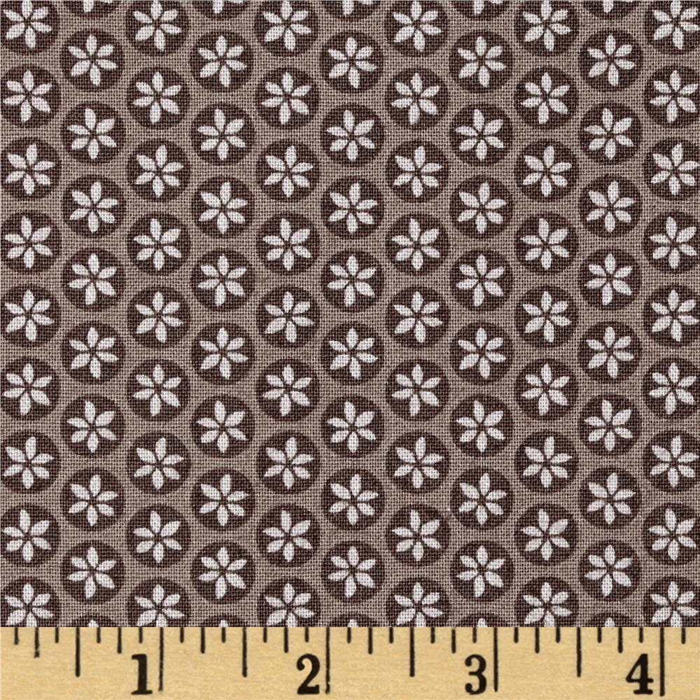 Captivate Daisy Dot Taupe Fabric By The Yard
