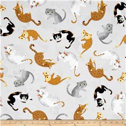 Kaufman Whiskers & Tails Cat Toss Grey