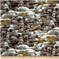 Michael Miller Landscapes Floral Just Rocks Gray