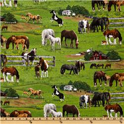 Farm Animals 2011 Horses Green