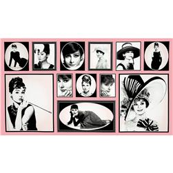 "Hollywood Icons 24"" Panel Audrey Blocks Pink"