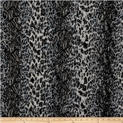 Stretch Lace Cheetah Print Black/Blue/Cream