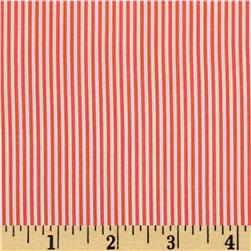 Wide Crease Resistant Pima Stripe Orange