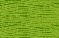 Anchor Six Strand Embroidery Floss  8.75 Yard Skein (255) Parrot Green