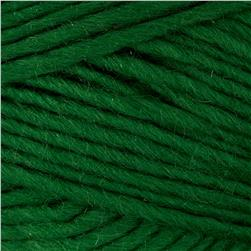 Bernat Sheep(ish) Yarn (00022) Emerald(ish)