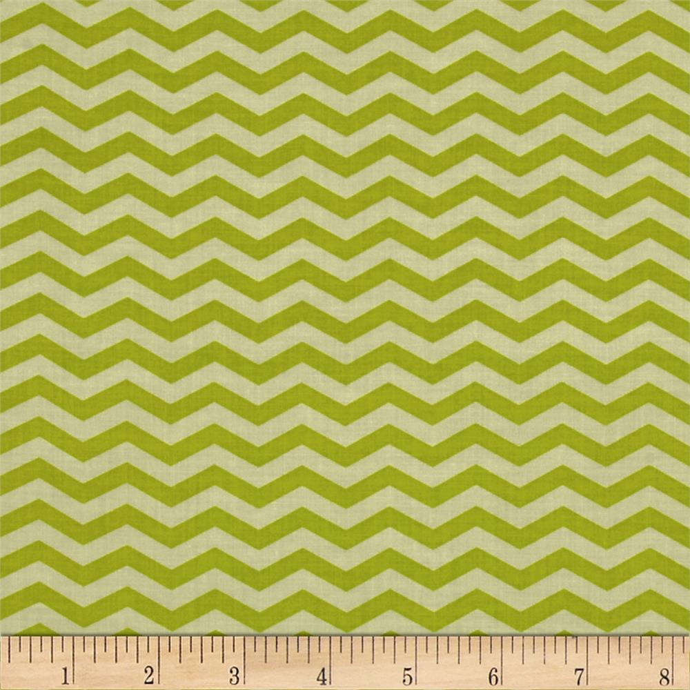 Heather Bailey True Colors Chevron Olive
