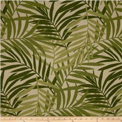 Tempo Indoor/Outdoor Bahama Fern Green