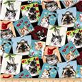 Curious Cats Tossed Postcards Black