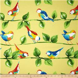 Richloom Solarium Outdoor Curiousbirds Soleil