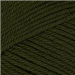 Deborah Norville Everyday Solid Yarn 08 Pine Green