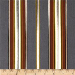Mayfair Wide Stripe Gray/Natural Fabric