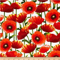 Kanvas New Bloom Poppy White