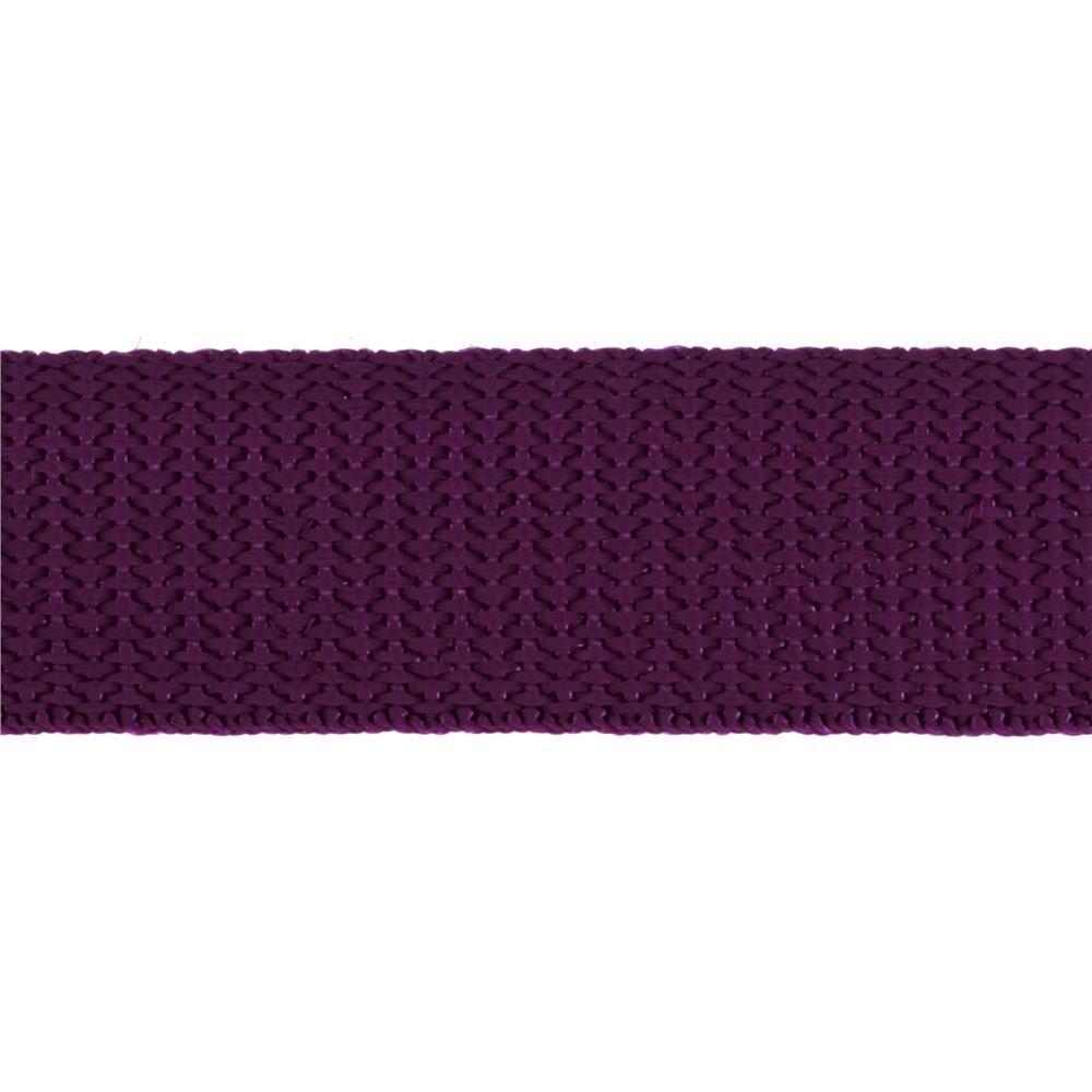 1'' Polyester Webbing Purple