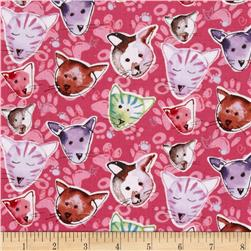 Paw Prints Kitties Pink Fabric