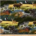 Robert Kaufman Bringing Nature Home Mountain Wildlife Nature