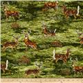 Robert Kaufman Bringing Nature Home Deer Nature