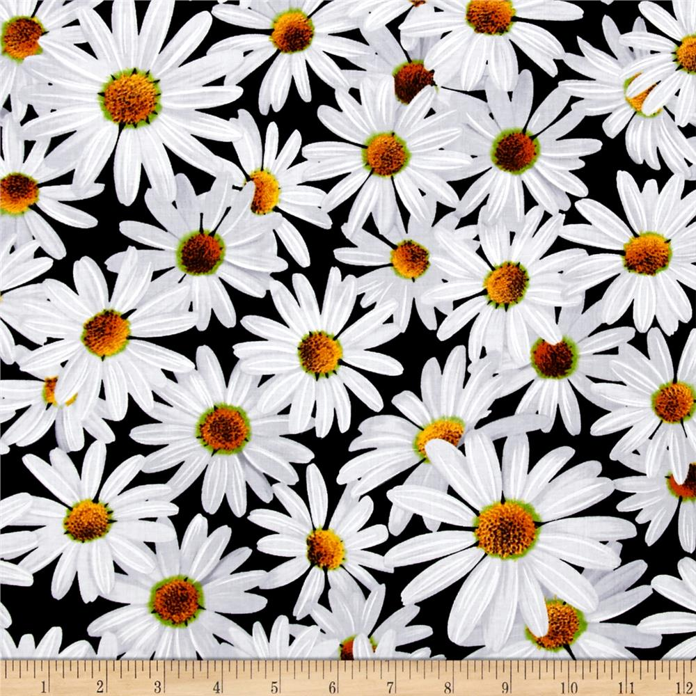 Kanvas Bloom With A View Daisy Dreamers Black - Discount ...