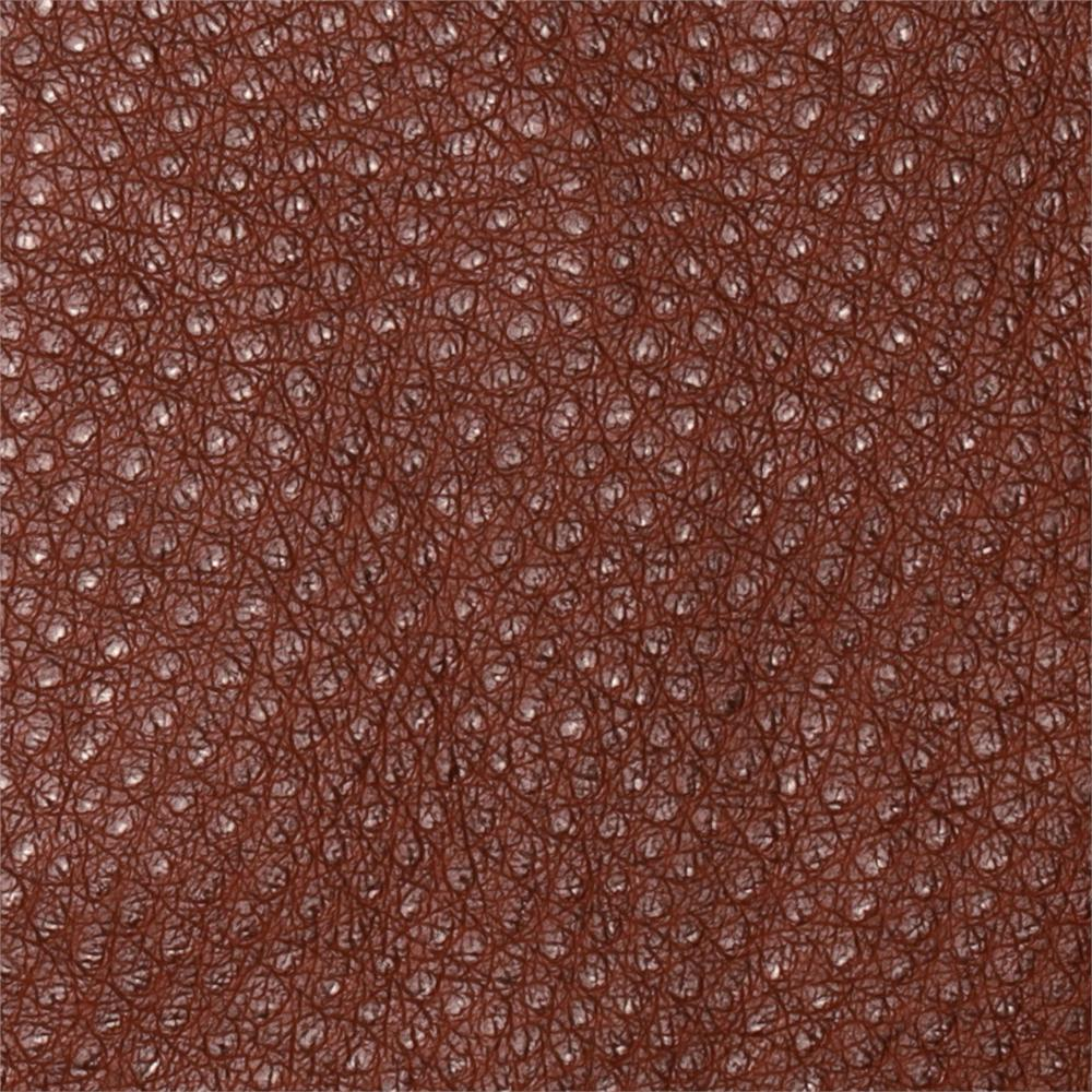 Faux Leather Ostrich Leather Brown
