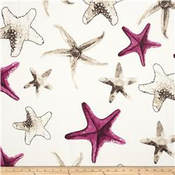 Largo Acrylic Indoor/Outdoor Starfish Oatmeal