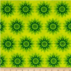 Calypso Allover Flowers Green/Green