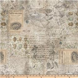 Tim Holtz Eclectic Elements Wallflower Eggs & Nest Multi